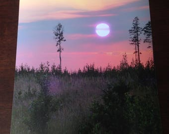 Sunset photography #4
