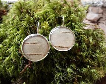 White Birch Bark Resin Drop Earrings, Silver Tone, 18mm, Botanical Jewelry, Wearable Herbarium