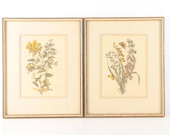 Framed Vintage Botanical Themed Aquatint Etching (Left)