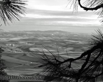 Artistic Photograph--Palouse