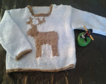 blue sweater with a reindeer on the front