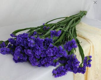 Fresh Statice, On hand, Statice, Purple Statice, Fresh flowers, Purple flowers, bulk flowers, wedding flowers, Bulk fresh flowers, flowers