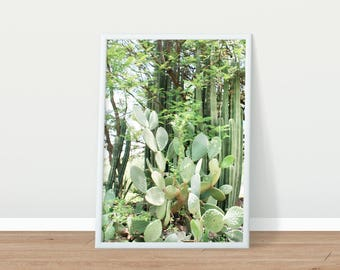 Printable Photography - Nature Photography - Cactus Photo - Printable Art