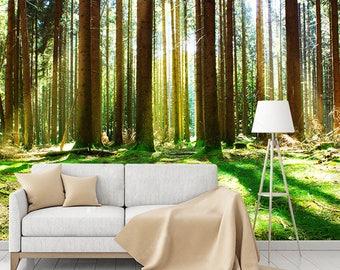 Forest Sunlight Mural