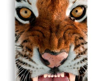 Roaring tiger case for Iphone 4 4S 5 5S 5C SE 6 6S 6plus 7 7plus 8 8plus X  hard cover