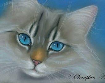 Blue Eyed Color Point Cat Original Pastel Painting