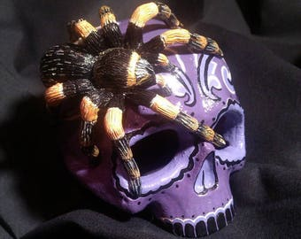 Skull with spider