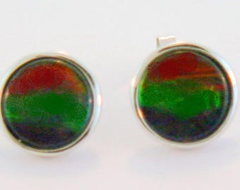 Pair of  large Round   Canadian Ammolite set in 14k White Gold
