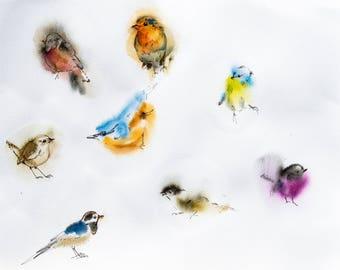 Original watercolor, birds