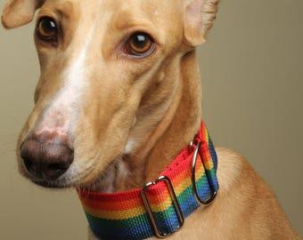 Rainbow Martingale, Limited Slip Collar
