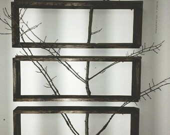 Birch Tree Wall Art, Tree Art, Wall Art, Modern Tree Decor, Wood Art, Framed Tree Art, Framed Art, Home Decor, Tree, Wood Project,Birch tree