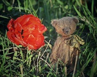 Author mohair teddy bear