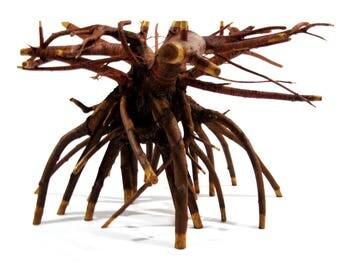 """Tree Root Table - """"Viceversa"""""""
