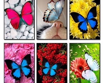5D Diamond Mosaic Diy Diamond Embroidery butterfly 3d Square Paste Full Cross Stitch Kit Diy Diamond Painting