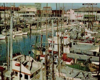 Vintage San Francisco Fishing Fleet Postcard | California, Fishermen, Fish, Fisherman's Wharf, Port, Nautical, Ocean | Paper Ephemera |
