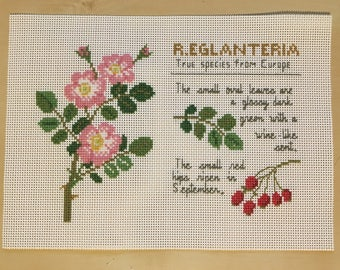 13x18cm Finished completed cross stitch picture--Unframed