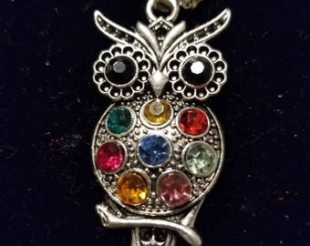 """Boutique...Order Now for Valentine... Silver Alloy Beautiful Colorful Rhinestone Owl 18"""" Silver Coated Necklace"""