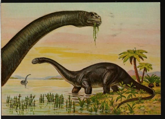 Brontosaurus - Matthew Kalmenoff - 1985 - Vintage Postcard