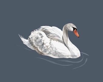 Lovely Swan