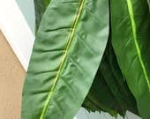 Silk Ti Leaves for Polynesian Costumes, Crafts and Decorations-14 leaves- ti leaf-Tahitian costume, Polynesian crafts,