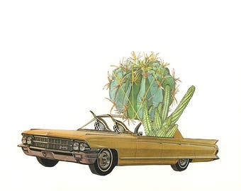 Cactus wrens. Limited edition print by Vivienne Strauss