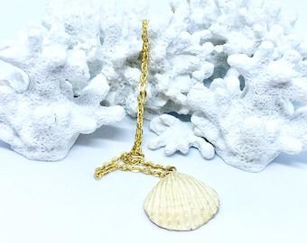 Petite Clamshell Pendant