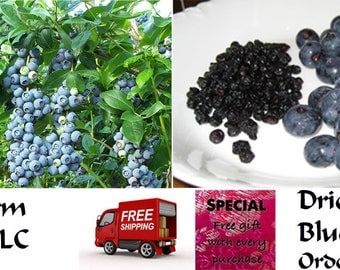 Dried Blueberries, Chemical FREE, Healthy, Delicious, Order now, FREE shipping
