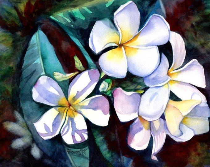 Plumeria Paintings, Original Watercolors, Tropical Flower Painting, Frangipani Art, Kauai Fine Art, Hawaiian Hawaii Maui Oahu kauaiartist