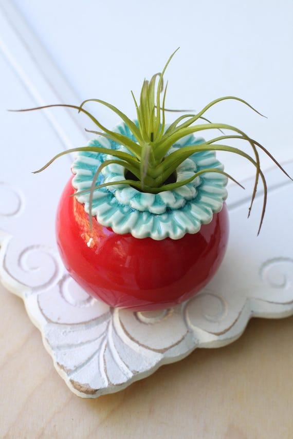 small red poppy vase