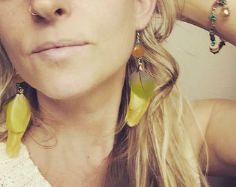 Beautiful Jean Macaw Feather Earrings and Bracelet Set