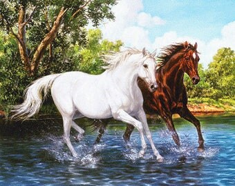 "TWO HORSES 19"" x 15"" Diamond Painting Embroidery Kit 5D Diamond Embroidery Needlework Paint With Diamonds Resin Beads Diamond Cross Stitch"