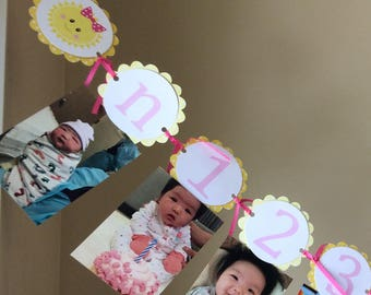 Sunshine First Year Monthly Photo Banner, 0-12 Months, Baby's First Year Monthly Photo Banner