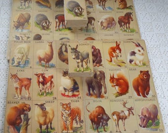 Vintage Lotto Game Animal Cards 1930s Partial Set
