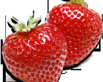 All natural Strawberry Lip  Balm Flavor