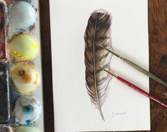 Hawk feather - original watercolour study