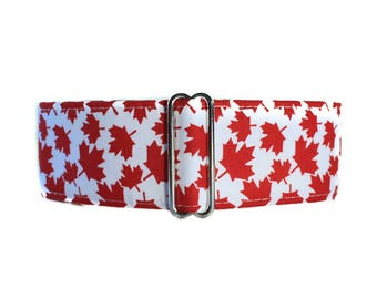 Canada Day Martingale Collar, Canadian Flag Martingale Collar, Maple Leaf Martingale, Canada Day Dog Collar, Maple Leaf Dog Collar