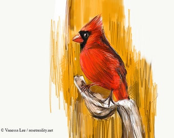 Northern Cardinal Print, Bird Illustration, Digital Drawing, Animal Wildlife Art Postcard NC3