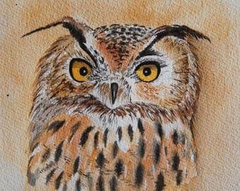 hibou grand duc, oiseaux, nature, oiseaux de proie,art, art animalier,  aquarelle originale signée