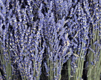 Dried Lavender, Herb, Summer,  Spa, Purple, Photograph, Farmhouse, Farmers Market, Home decor, Modern, Original Fine Art Photograph, Print