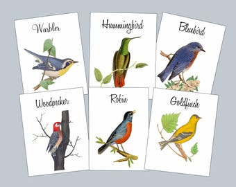 Wedding Table Numbers, Bird Table Tent Cards with Bird Names, Vintage Bird Illustrations, Bird Theme, Table Tents, Table Numbers