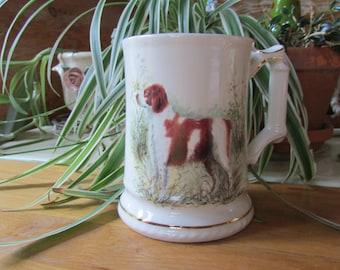 Royal Windsor Spaniel Beer Stein Mug