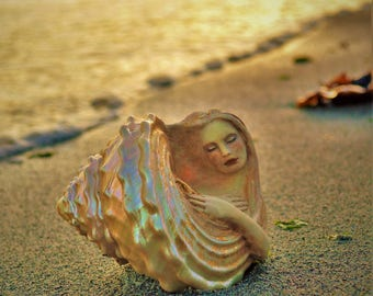 5 x 8 Print, Art Card, Print, Pearl In A Shell, By ShapingSpirit