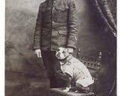 Sgt Stubby for Randolph Decoupaged on Wood