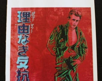 Andy Warhol's Rebel Without A Cause(James Dean )1985 Museum Modern Art book plate page unframed heavy stock page size 11 x14 image 10x 10