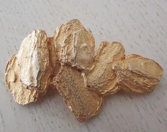 Brooch golden nuggets