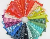 Cotton + Steel Rainbow Fat Quarter Bundle -  25 Fat Quarters - 6.25 Yards Total
