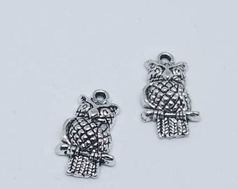 Silver Perched Owl Charms