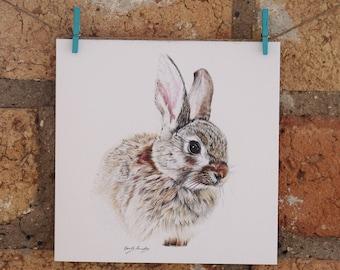 Illustrated Bunny Rabbit Card