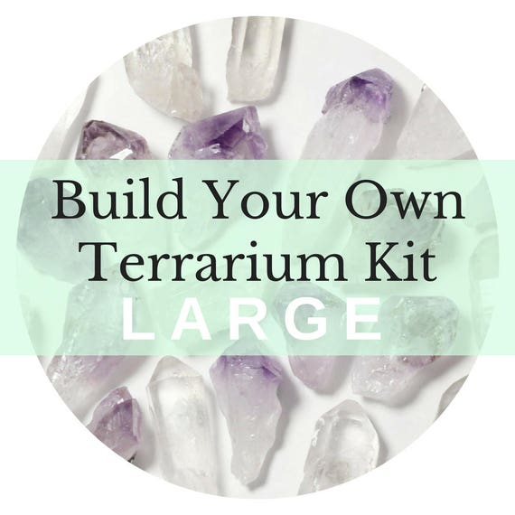 Large Custom Terrarium Kit || Build Your Own Air Plant + Crystal DIY Kit