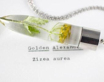 Golden Alexander (Zizea aurea) Botanical Jewelry, Real Flower Resin, North American Flora, Naturalist Jewelry, Wildflower Necklace, Herbals